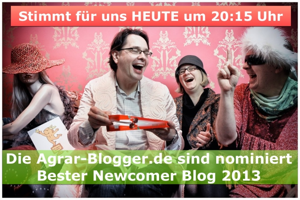 Blogger 2013 Wir sind nominiert!