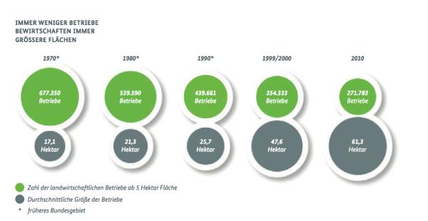 Entwicklung Anzahl Betriebe und Betriebsgrößen in der Landwirtschaft Quelle BMELV