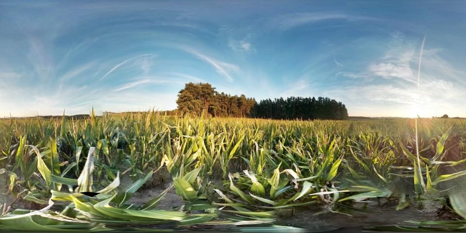 Landwirte stellen sich Verbraucherfragen im AgChatDE