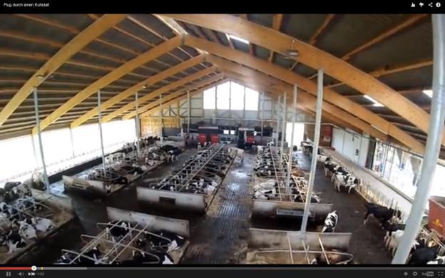Moderner Milchviehstall